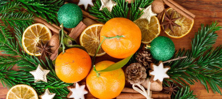Tips for a Healthy Holidays